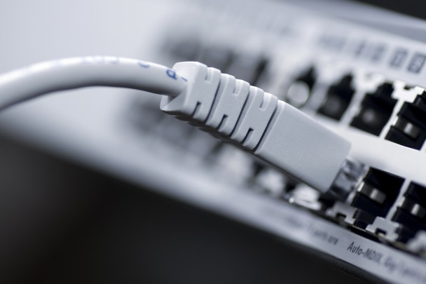 Network cable connected to a switch