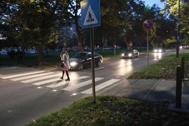 intelligens-zebra-Debrecenben